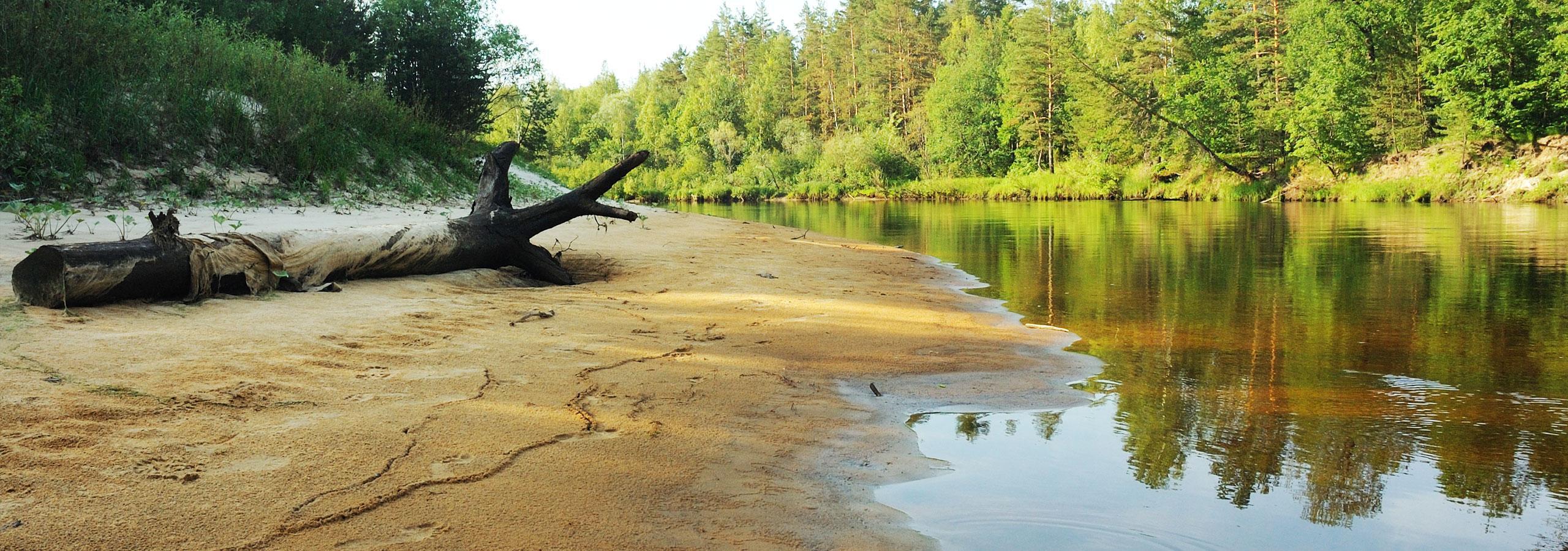 Russian River Vacation Home Rentals Russian River Getaways